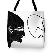 Anatomy: Human Cranium Tote Bag
