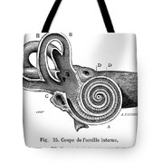 Anatomy: Middle Ear Tote Bag