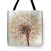 Anatomy Of A Weed High Key  Tote Bag