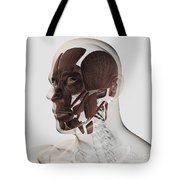 Anatomy Of Male Facial Muscles, Side Tote Bag
