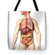 Anatomy Of Male Respiratory Tote Bag