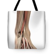 Anatomy Of The Foot Tote Bag