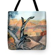 Anceint Canyon Watcher Tote Bag