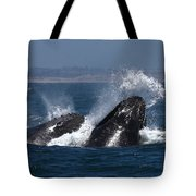 Anchovie Lunge Tote Bag