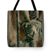 Ancient Barrier Tote Bag