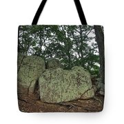 Ancient Boulders Tote Bag