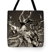 Ancient Bristlecone Pine In Black And White Tote Bag