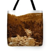 Ancient Brook - Sepia Tones Tote Bag