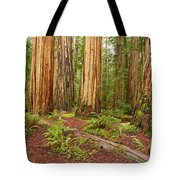 Ancient Forest - The Massive Giant Redwoods Sequoia Sempervirens In Redwood National Park. Tote Bag