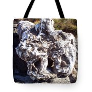 Ancient Gnarled Driftwood - Oregon Beach Tote Bag