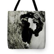 Ancient Goddess Tote Bag