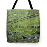 Ancient Ireland Tote Bag