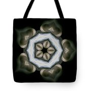 Ancient Light I Tote Bag