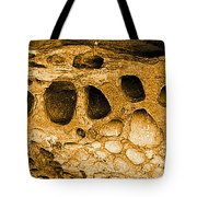 Ancient Rock In Canyonlands 2 Tote Bag