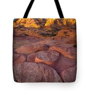 Ancient Seabed Tote Bag