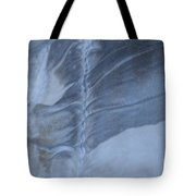 Ancient Upholstery Tote Bag