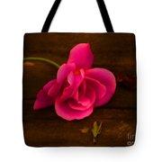 And A Girl Dreams Tote Bag