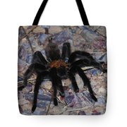 And Along Came A Little Spider .  Tote Bag