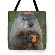 And Have You Looked In The Mirror Lately Tote Bag