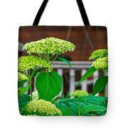 And The Livin' Is Easy Tote Bag