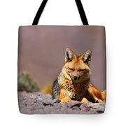 Andean Fox Portrait Tote Bag