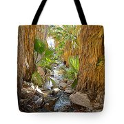 Andreas Creek In Andreas Canyon In Indian Canyons-ca Tote Bag