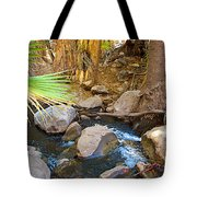 Andreas Creek In Indian Canyons-ca Tote Bag