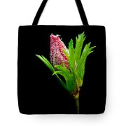 Anemone Flower Details Tote Bag