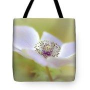 Anemone In White Tote Bag