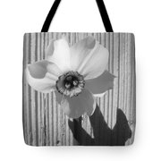 Angel Eyes Narcissus Tote Bag