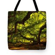 Angel Oak Limbs Crop 40 Tote Bag