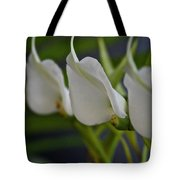 Angel Row Tote Bag