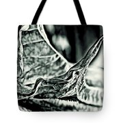 Angel Wing Variation Black White Tote Bag