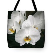 Angelic Delight Tote Bag
