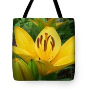Angie's Asiatic Tote Bag