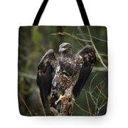 Angle's Wings Tote Bag