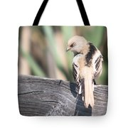 Angry Bird Bearded Reedling Juvenile Tote Bag