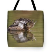 Angry Grebe Tote Bag