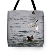 Angry Gull Tote Bag