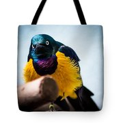 Angry Sunbird Tote Bag