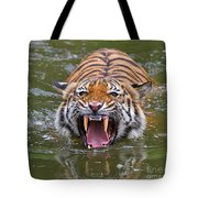 Angry Tiger Tote Bag by Louise Heusinkveld