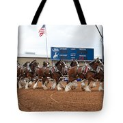 Anheuser Busch Clydesdales Pulling A Beer Wagon Usa Rodeo Tote Bag
