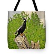 Anhinga Bird On Stump Tote Bag