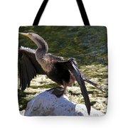 Anhinga Female Tote Bag