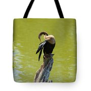 Anhinga Grooming Feathers Tote Bag