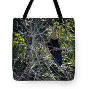 Anhinga In Brush Tote Bag