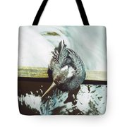 Anhinga Or Snakebird Tote Bag