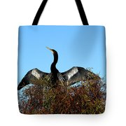 Anhinga Pride Tote Bag by April Wietrecki Green