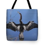 Anhinga  Sunbathing Tote Bag