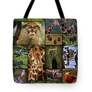 Animal Collage Tote Bag